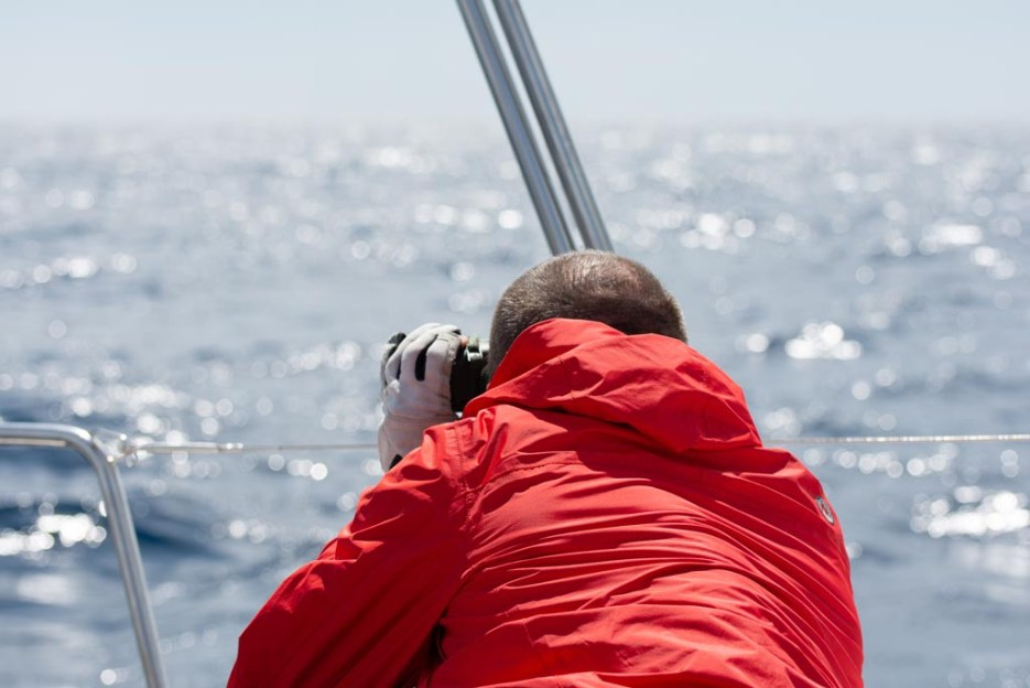 soul sailing crew