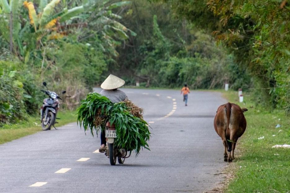 tamron 18-400 mm beispielfoto straße vietnam