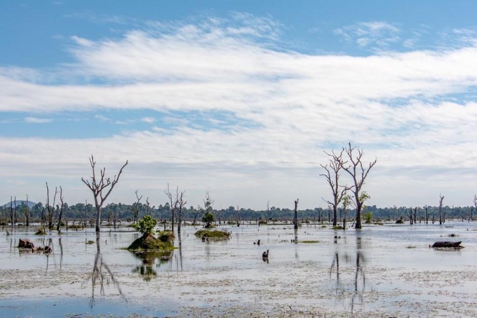 tamron 18-400 mm beispielfoto landschaft angkor kambodscha