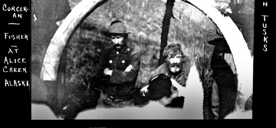1907. Tusk hunters in Alice Creek Alaska.