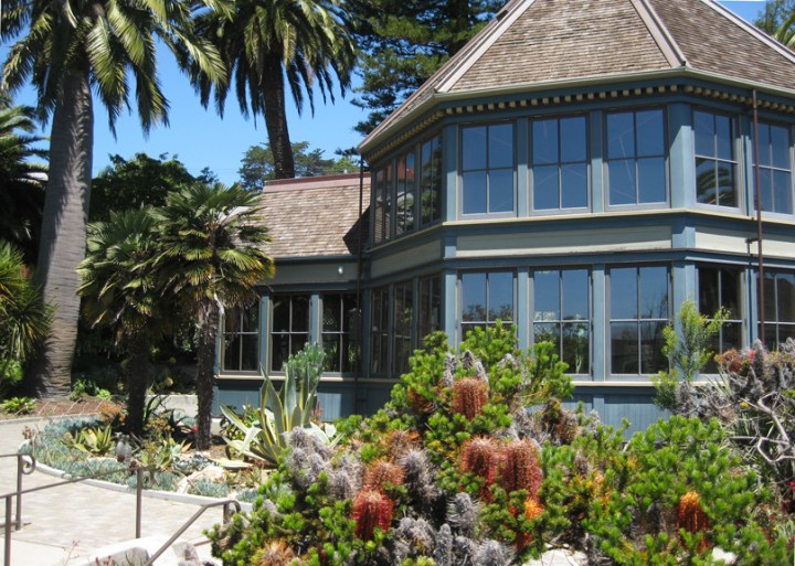 2016. Sunnyside Conservatory, Monterey Blvd, San Francisco CA. Photo: Amy O'Hair.