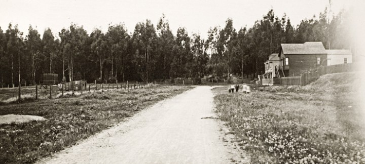 1910-Baldwin-Sutro-RanchoSanMiguel-Sunnyside-Aves