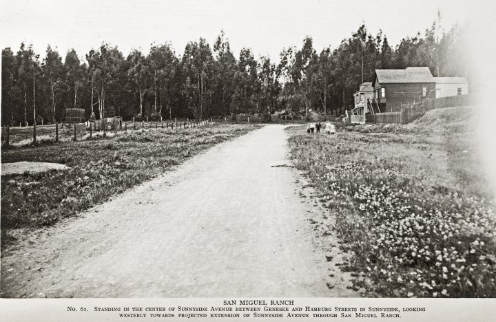 1910c. Looking west, Monterey at Ridgewood, showing Sutro's Forest. Image courtesy the Sutro Library.