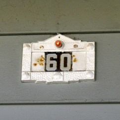 60gaviota