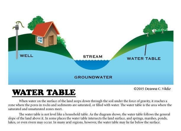 Water Table Illustration