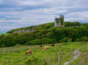 Ballinalacken Castle, Co. Clare