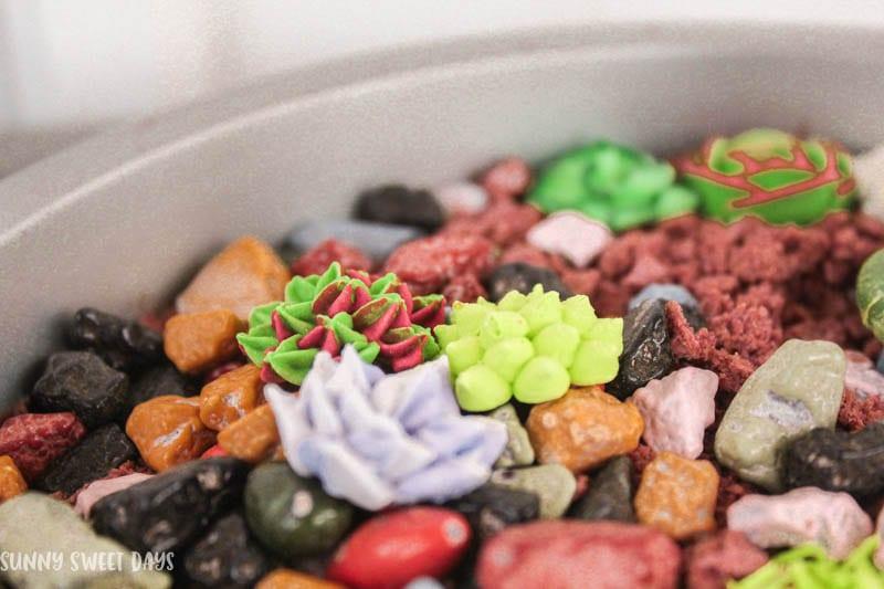 DIY Edible Fairy Garden With Candy Succulents Tutorial