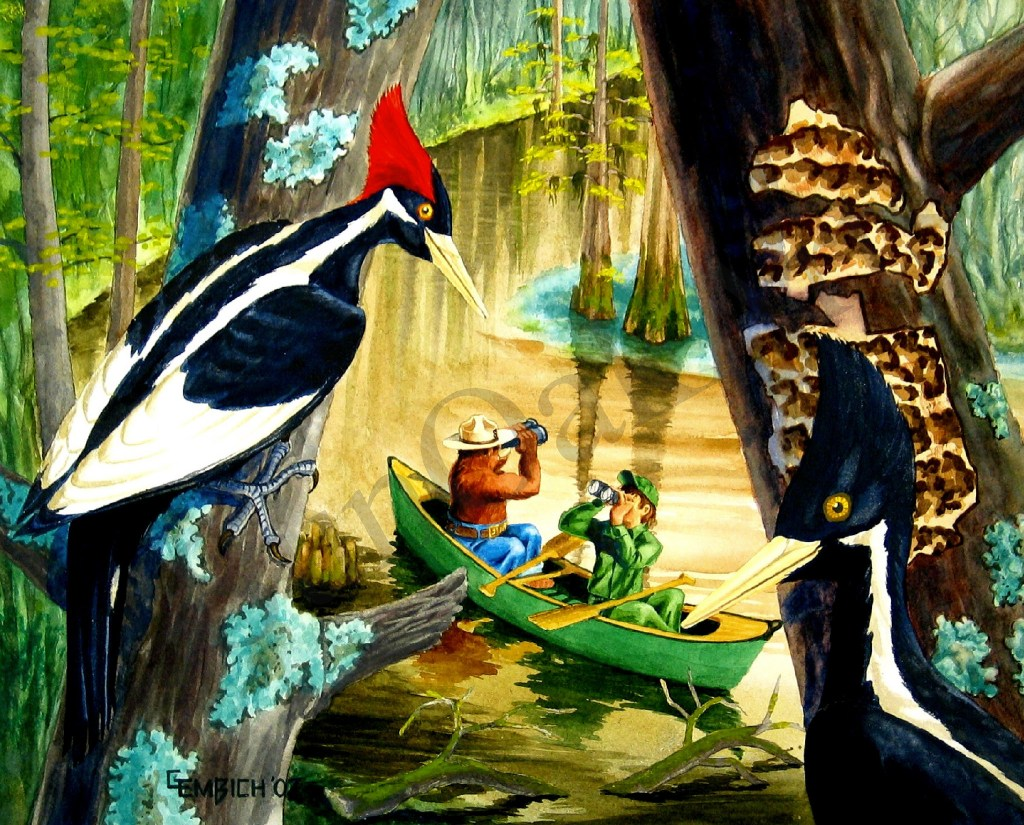 Cache River National Wildlife Refuge