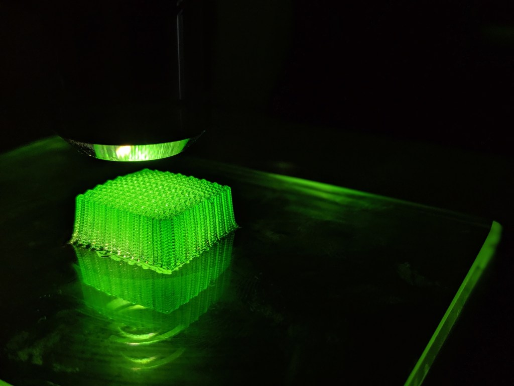 hydrogel pluronic structure bioprinted