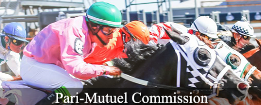 Wyoming Pari-Mutuel Commission Joins RIMS Family