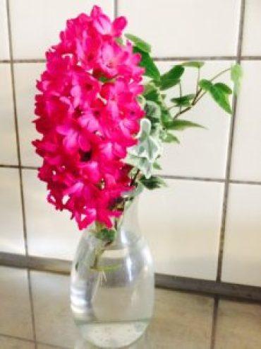 女性専用のエステルームに春の癒しの切り花を飾りました