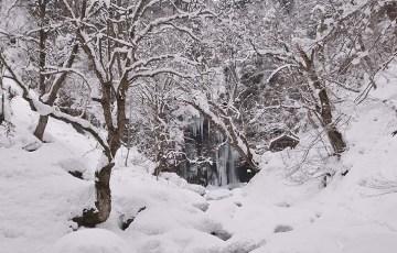 阿弥陀ケ滝の氷瀑