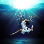 Random image: Dance With Fish - Mark Mawson