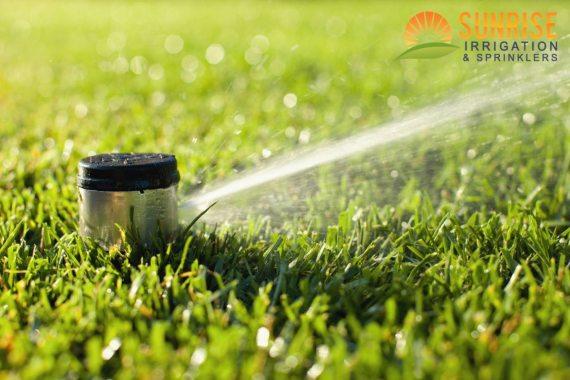 tampa-sprinkler-system-summer