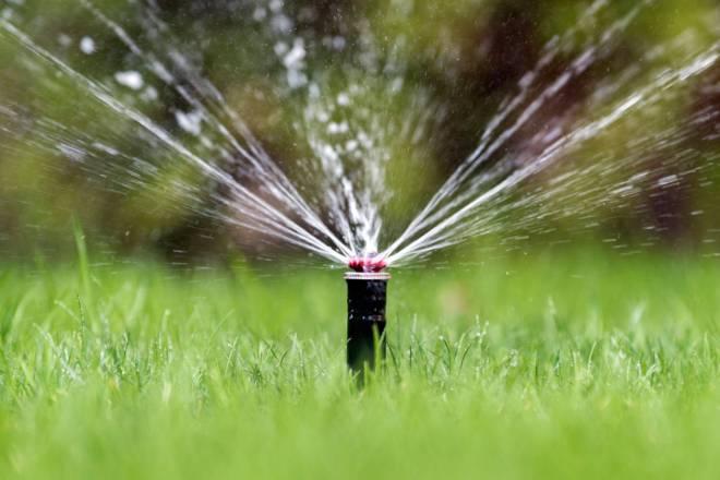 common-sprinkler-repair-tampa