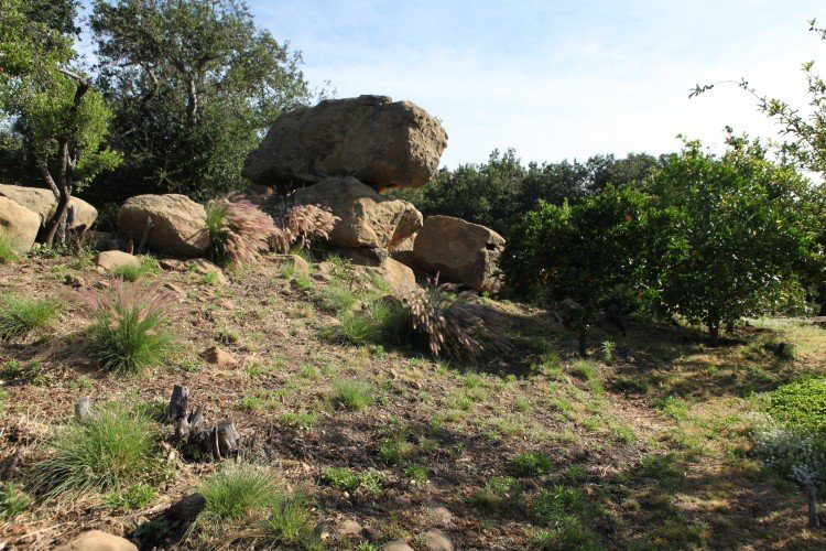 Back-rocks-750x500