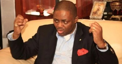 Fani-Kayode blasts Access Bank for sacking workers after giving N1b to FG for COVID-19
