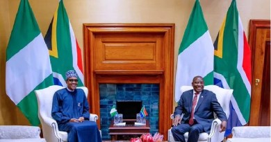 Buhari's visit: South Africa to Issue 10 years Visas to Nigerians