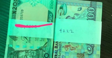 Mixed reactions as Lady Narrates How Man Gave Her His Number On N30k Mint Notes