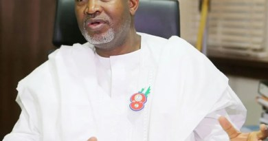FG denies 3 APC governors, 2 others from flying out of Nigeria amid COVID-19