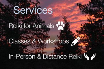 Reiki Services