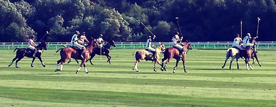 Sunseeker Cheshire attend 2014 Audi International Polo Series at Chester Racecourse