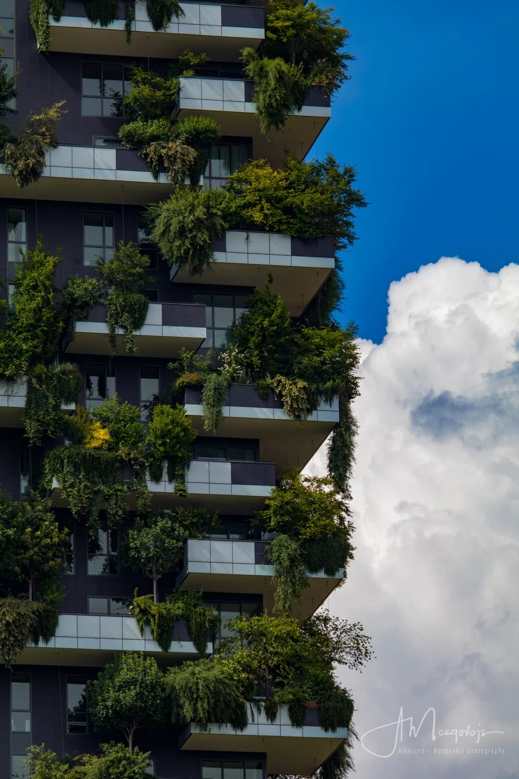 An eco-building Vertical Forest is a great subject for photography in Milan