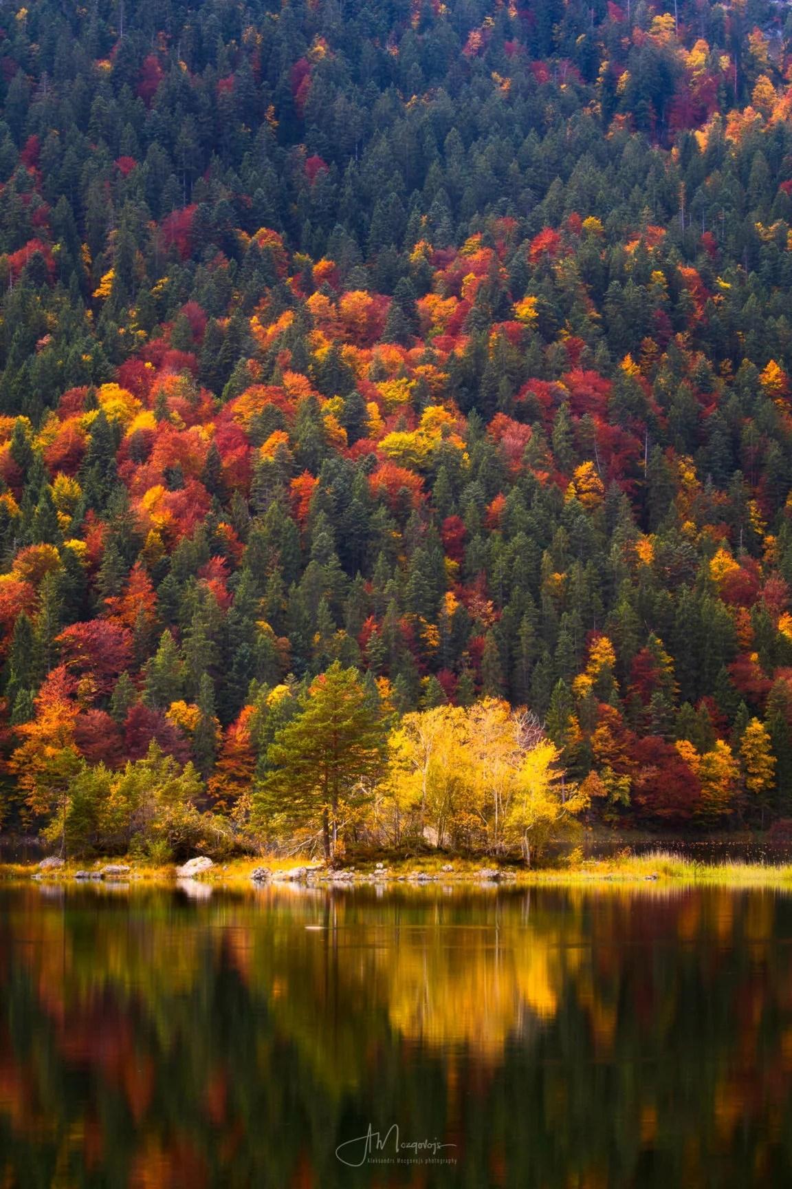 Autumn colors at Eibsee, Bavaria, Germany
