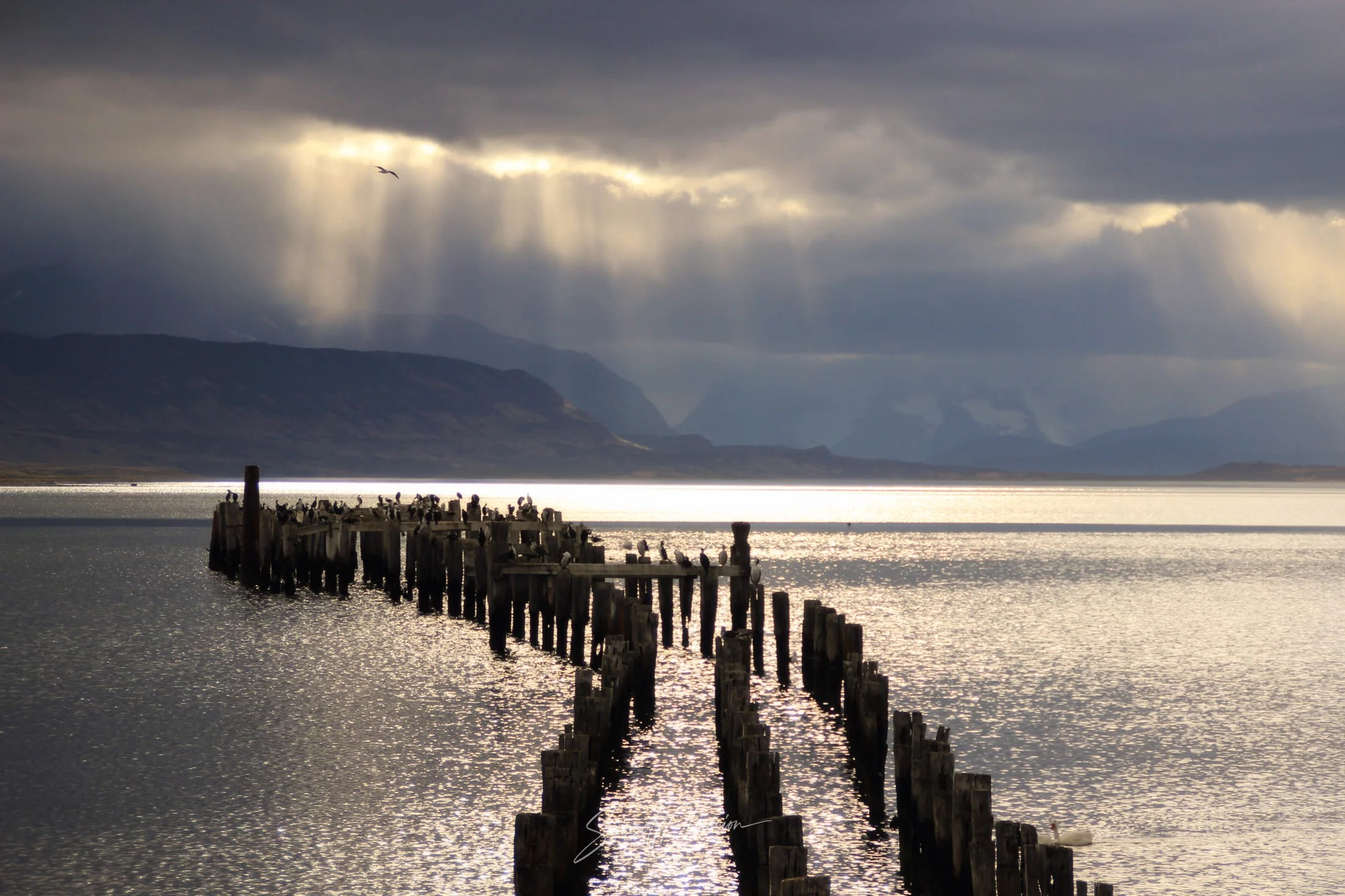 An Old pier in Puerto Natales at sunset