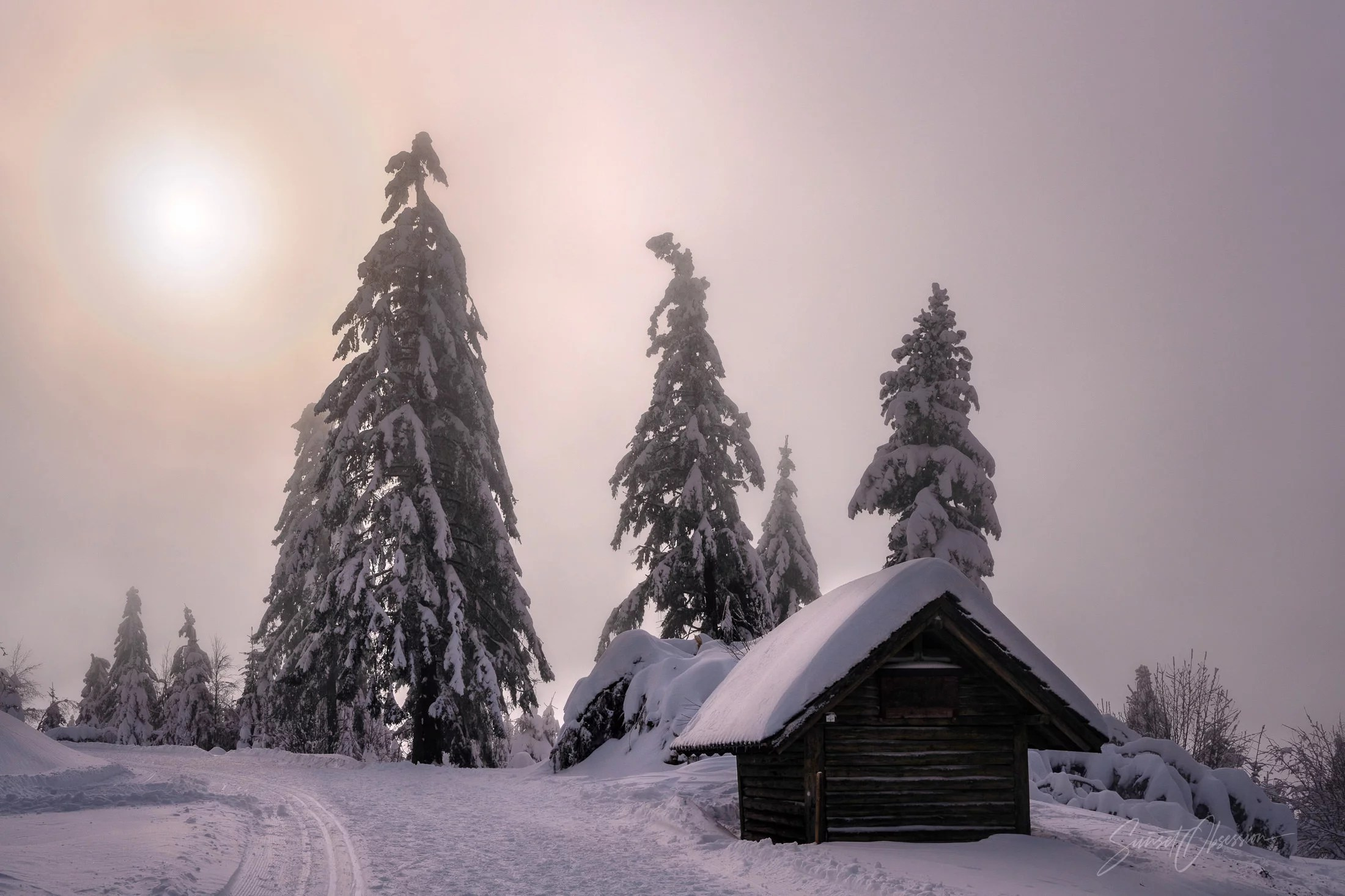 A cabin in the woods in the Black Forest
