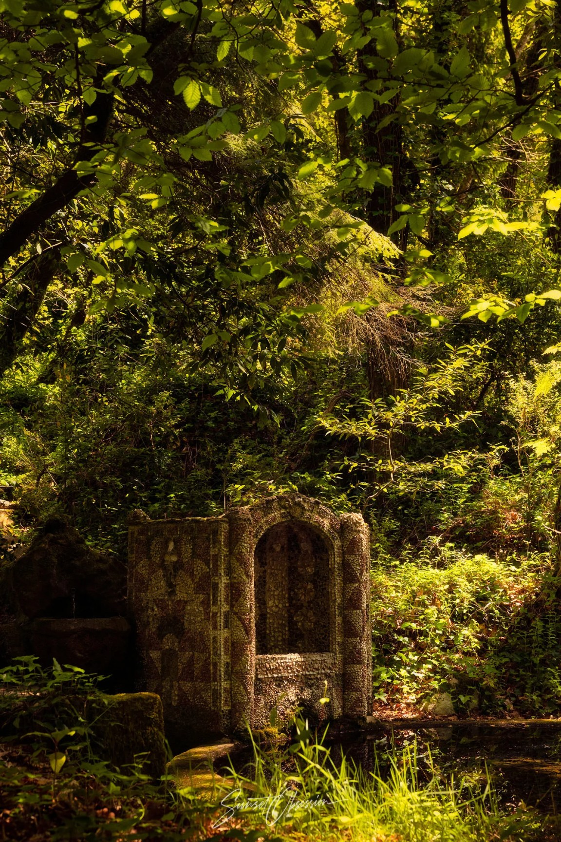 Pena gardens is a great spot for photography in Sintra