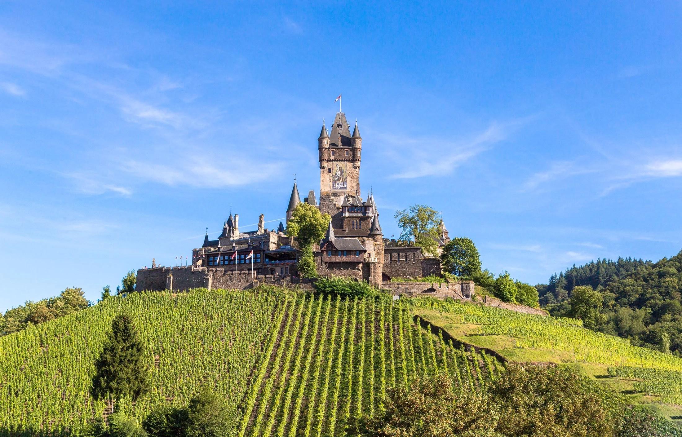 Ряды виноградников в качестве ведущих линий к замку