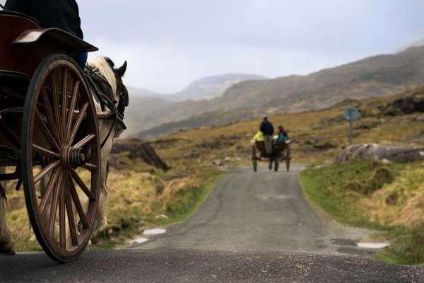 Exploring Ireland's nature