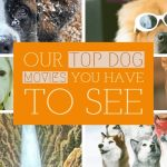 Top 6 Dog Movies Of All Time 2019 – Our Personal Fav
