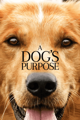 a dogs purpose best dog movie 2019