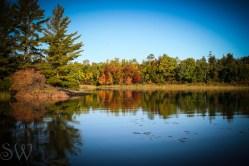 Autumn Shore