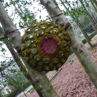 Rydal Hall Sculpture Trail.