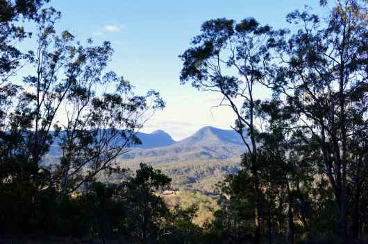 View through the trees at Spicers Peak Lodge