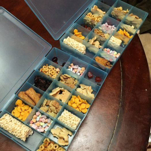 snack tackle boxes tips for road trips with kids | sunshineandholly.com