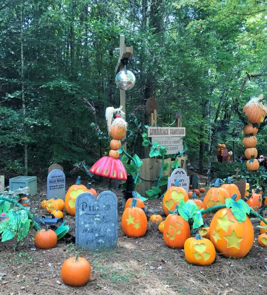 Pumpkin Palooza | sunshineandholly.com | dollywood