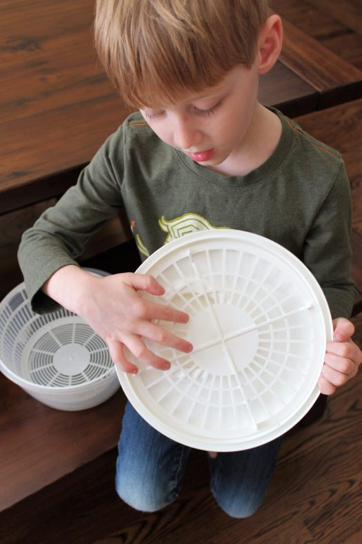 Picking Your Battles in Parenting and That Time My Son Took a Salad Spinner to Preschool | sunshineandholly.com | motherhood humor