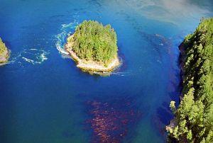 Explore the Sunshine Coast of BC