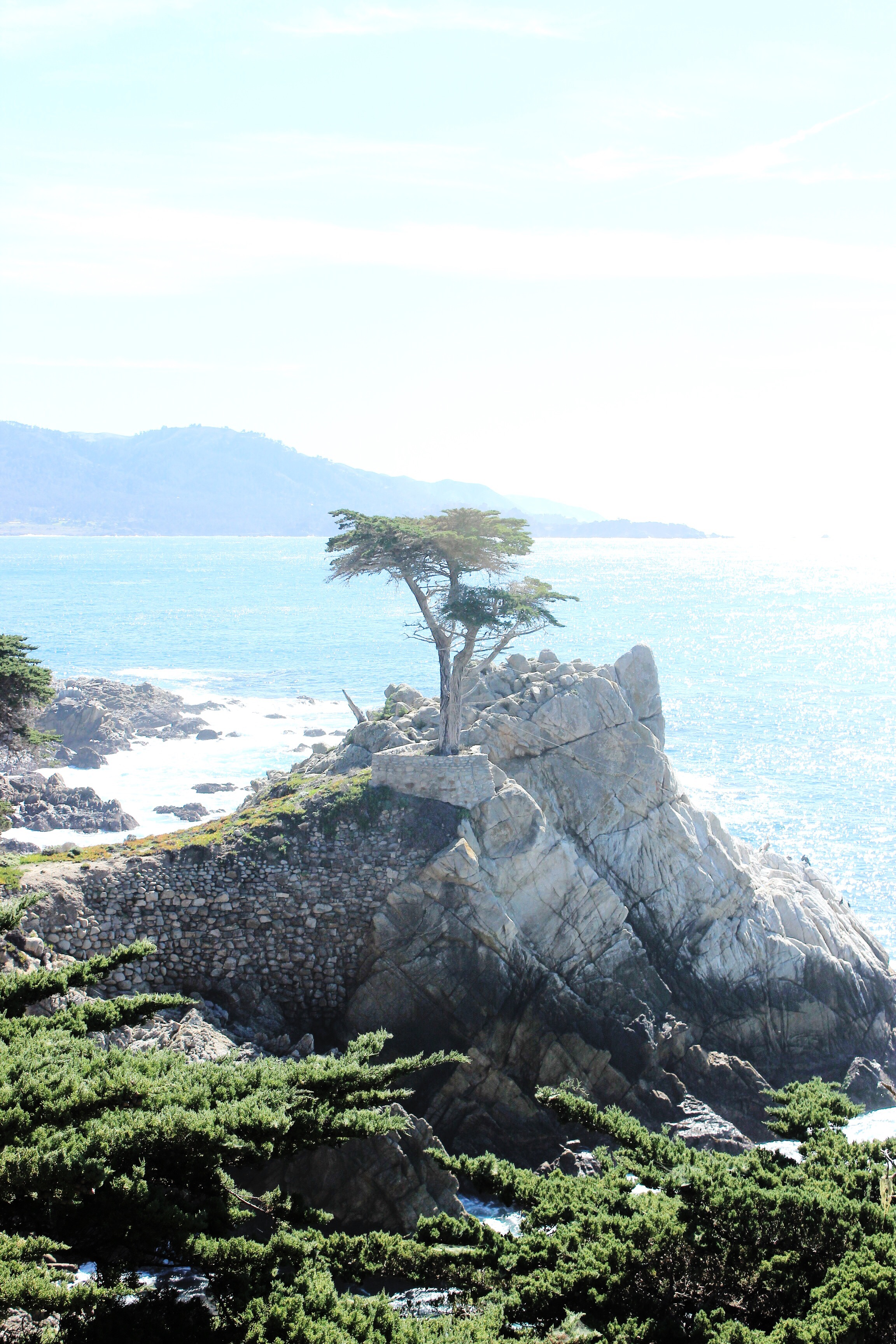 17 Mile Drive Guide / Modern Daydream Living