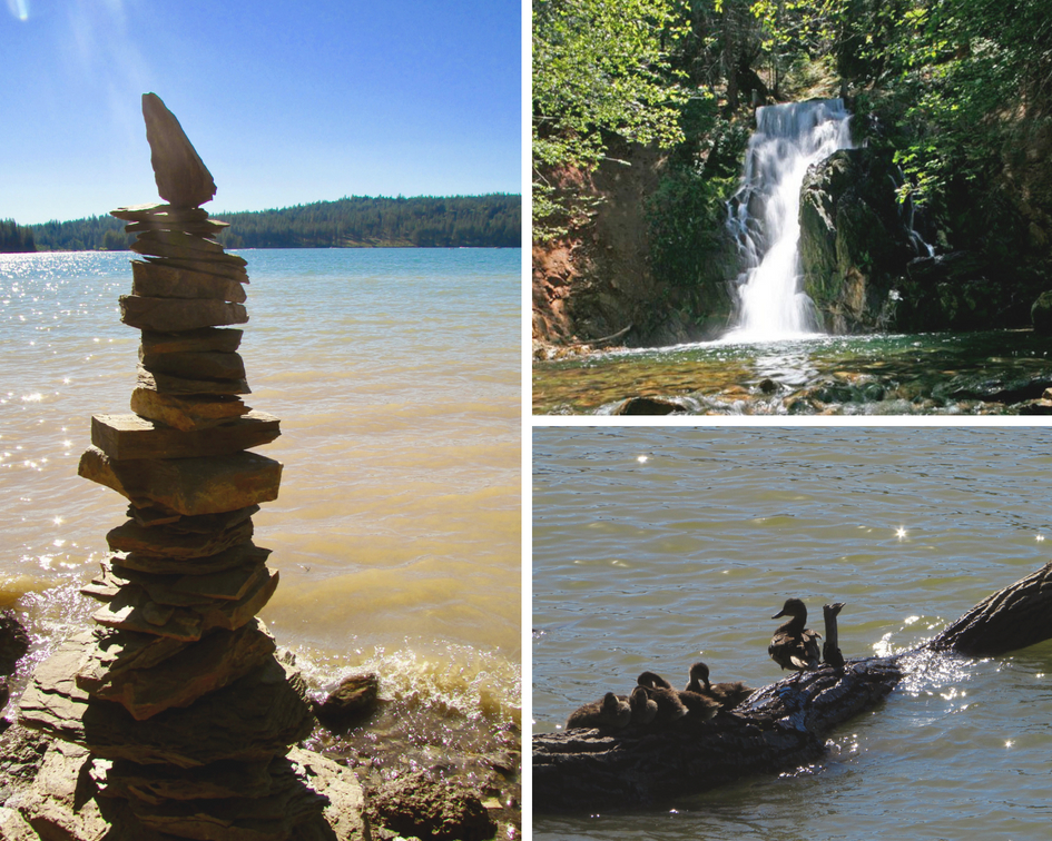 Cairn, waterfall, ducks on a log