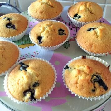 blueerry muffins 2