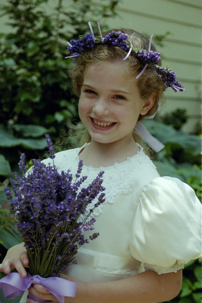 For Weddings Sunshine Lavender Farm