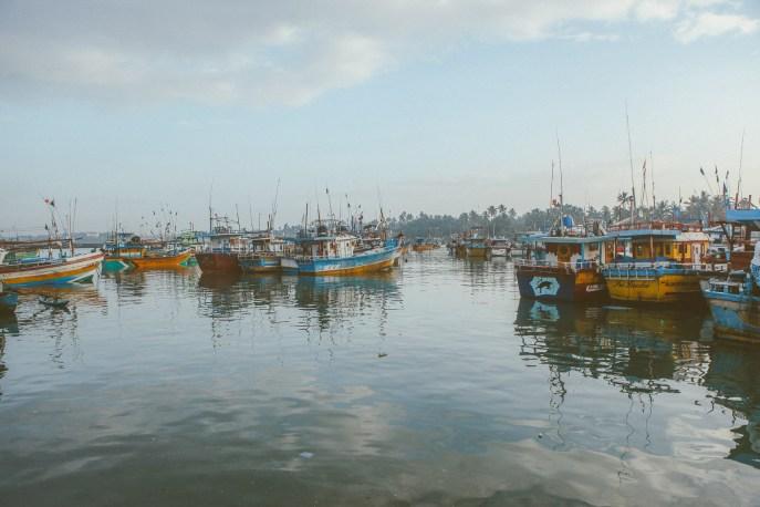 Sri Lanka-Surf-Medawatta-Dondra-Harbour-Tuna-Yellow-Fin-Sushi-Sashimi-Fresh-Burgers-Zephyr-Mirissa-IMG_7837