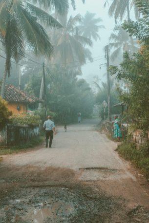 Sri Lanka-Railroad-Ahangama-Midigama-Galle-Road-Train-Sunrise-Blog-9473