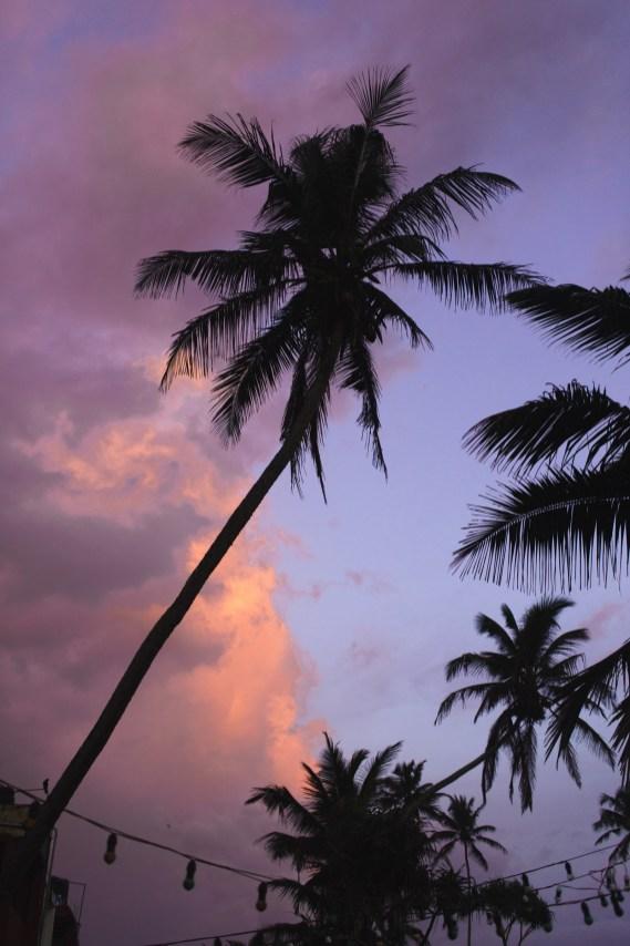 surfyogaretreatcampsrilankaWeek29-group-8065