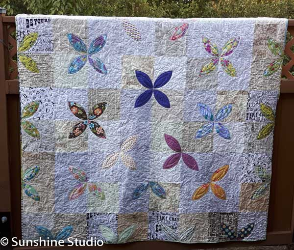 Raffle Quilt and Dog Walks